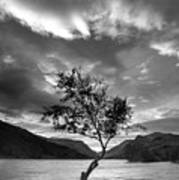 Black And White Beautiful Landscape Image Of Llyn Padarn At Sunr Poster