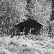 Black And White Cabin Poster