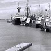 Black And White Fishing Boats On The Dock Poster