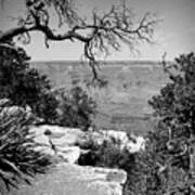 Black And White Grand Canyon 2 Poster