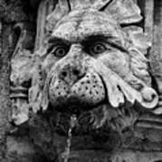 Black And White Lion Fountain On Dubrovnik Stradun, Dubrovnik, Croatia Poster