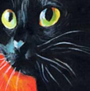 Black Cat Painting Portrait Poster