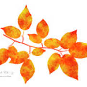 Black Cherry Pressed Leaf Art Poster