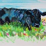 Black Cow Lying Down Painting Poster