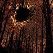 Black Hole Sun Poster