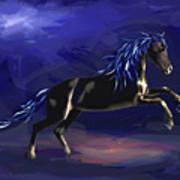 Black Horse At Night Poster