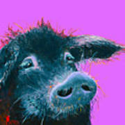 Black Pig Painting On Purple Poster