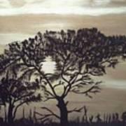 Black Silhouette Tree Poster