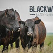 Blackwater Mug Poster