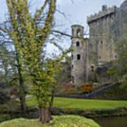Blarney Castle 3 Poster
