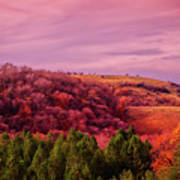 Blazing Autumn Poster