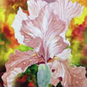 Blazing Iris Poster