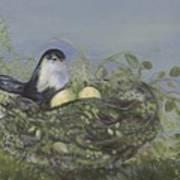 Blessed Nest Poster