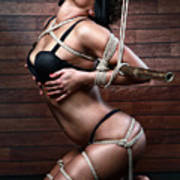 Blindfold, Tied In Lingerie To A Bamboo Tube - Fine Art Of Bondage Poster by Rod Meier