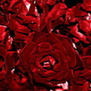 Blood Red Roses Poster