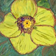 Bloom I Poster