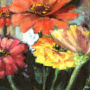 Blooming Zinnias Poster