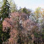 Blossom Tree Impressionist Poster