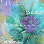 Blue And Purple Peony Poster