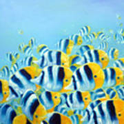 Blue And Yellow Fish Poster