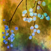 Blue Autumn Berries Poster by Judi Bagwell