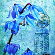 Blue Bells On Vintage 1936 Postcard Poster