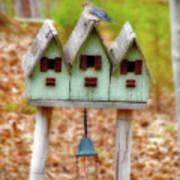Blue Birds Castle Poster