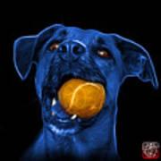 Blue Boxer Mix Dog Art - 8173 - Bb Poster