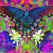 Blue Butterfly Pop Poster