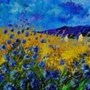 Blue Cornflowers Poster