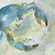Blue Crab. Poster