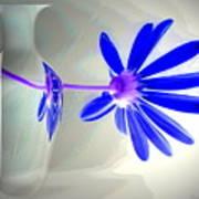 Blue Daisy Delight Poster