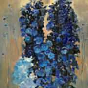 Blue Delphiniums For Nancy Poster