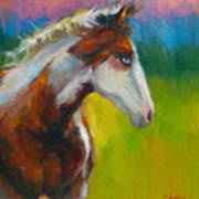 Blue-eyed Paint Horse Oil Painting Print Poster