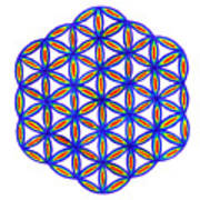 Blue Flower Of Life Poster