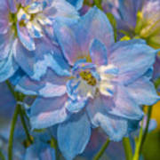 Blue Glory Poster