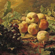 Blue Grapes And Peaches In A Wicker Basket Poster