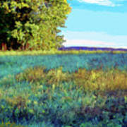 Blue Grass Sunny Day Poster