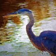 Blue Heron 2 Poster