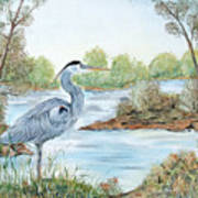 Blue Heron Of The Marshlands Poster