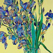 Blue Irises Poster