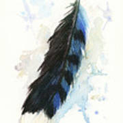 Blue Jay Feather Splash Poster