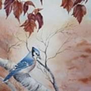 Blue Jay - Geai Bleu Poster