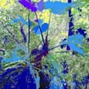 Blue Jungle Poster