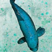 Blue Koi Poster