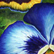 Blue Pansies  Poster