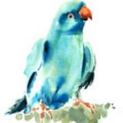 Blue Parrot Bird Poster