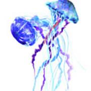 Blue Purple Jellyfish Artwork Design Poster