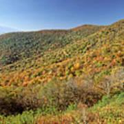 Blue Ridge Mountains In Autumn Poster
