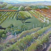Blue Ridge Vineyards 4.0 Poster